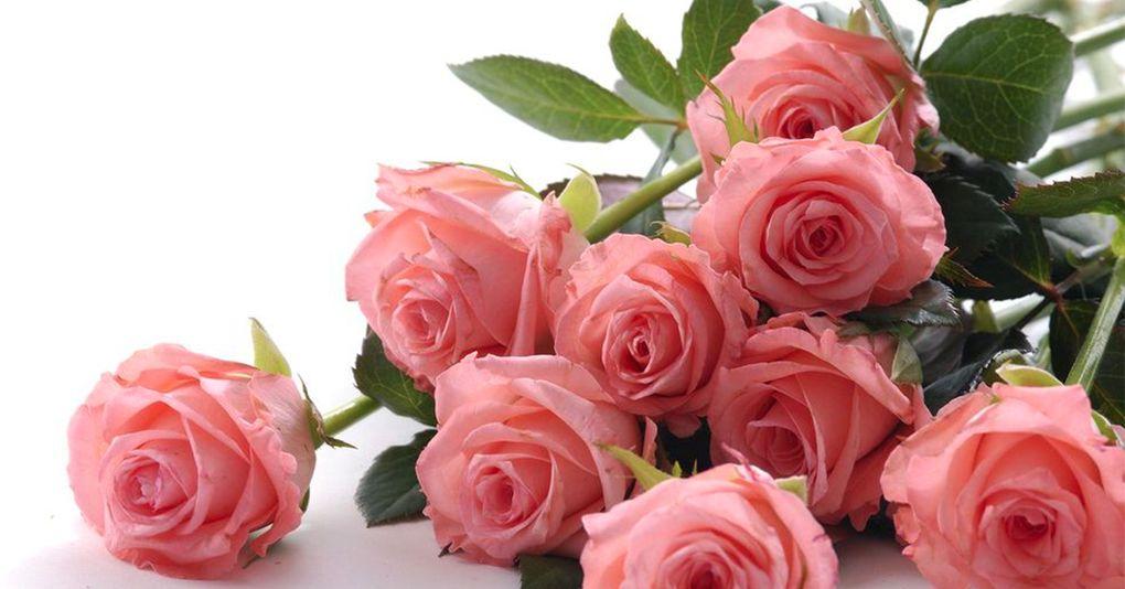 10 rosor betyder