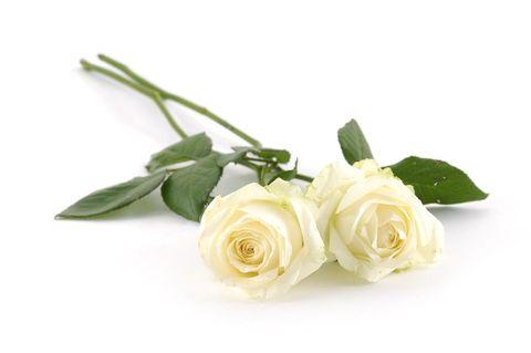 vad betyder tre rosor